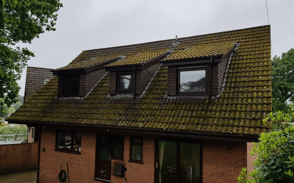 Roof Cleaning Lilliput External Cleaning